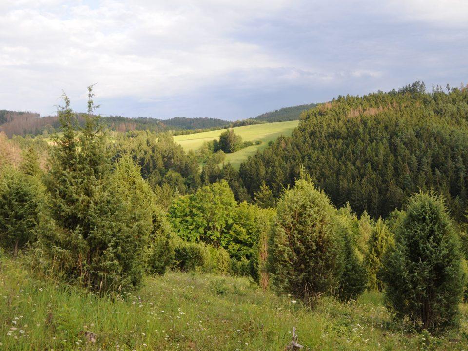 Evropsky významná lokalita Švařec (foto: Radka Broumová)