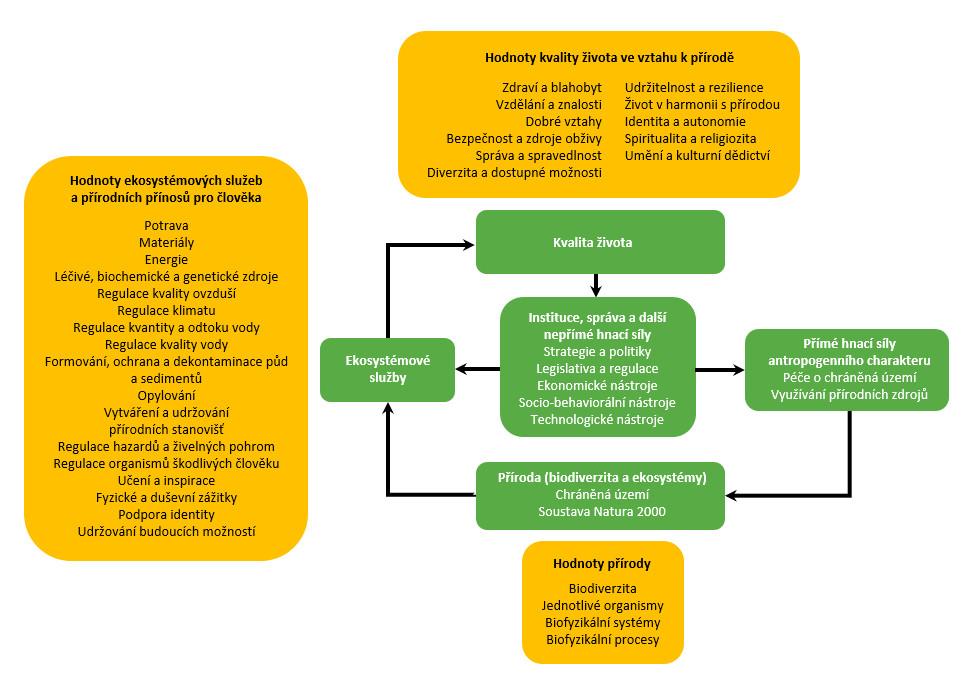 Koncepční rámec