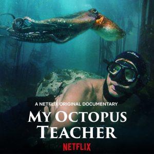 My Octopus Teacher (Moje učitelka chobotnice)