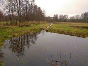 Vyhloubení tůní v evropsky významné lokalitě Hradiště. Foto: Petr Jiskra