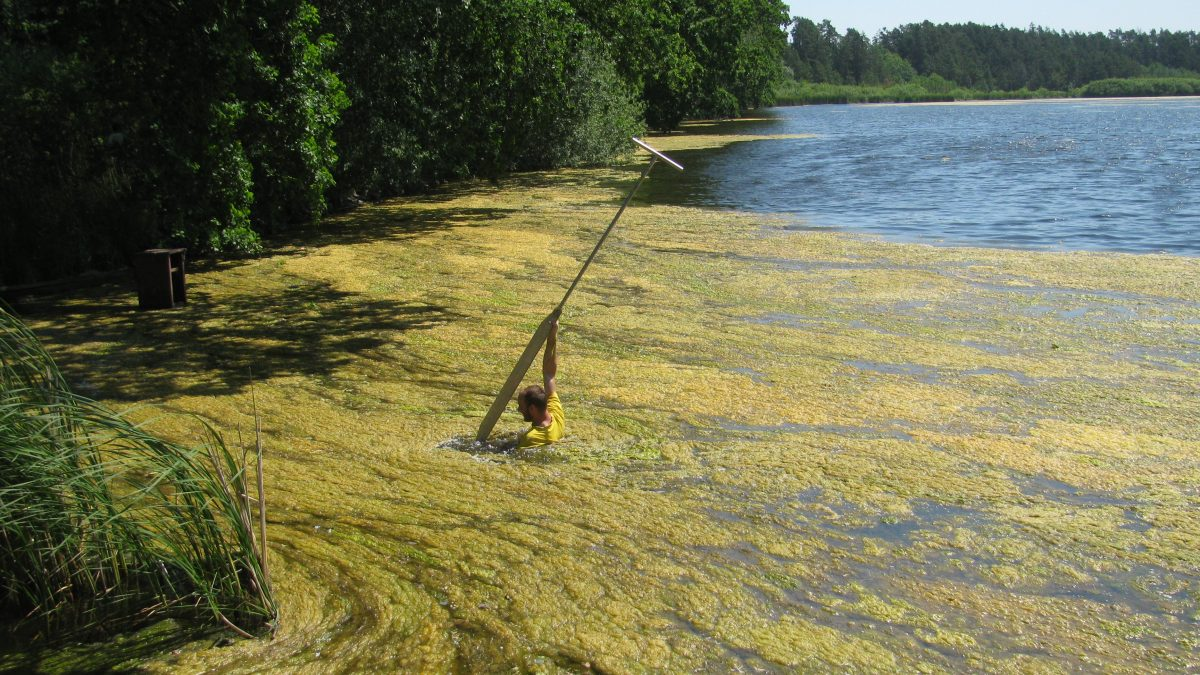Odebírání vzorků pro hodnocení stavu rybníků. Foto: Jana Javorská